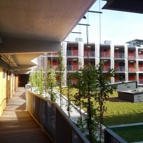 La toiture végétalisée du restaurant universitaire
